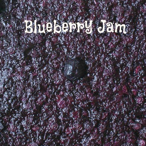 Blueberry Jam (SCD)